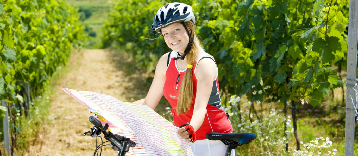 Bike and Dine: Pedal for Your Palate