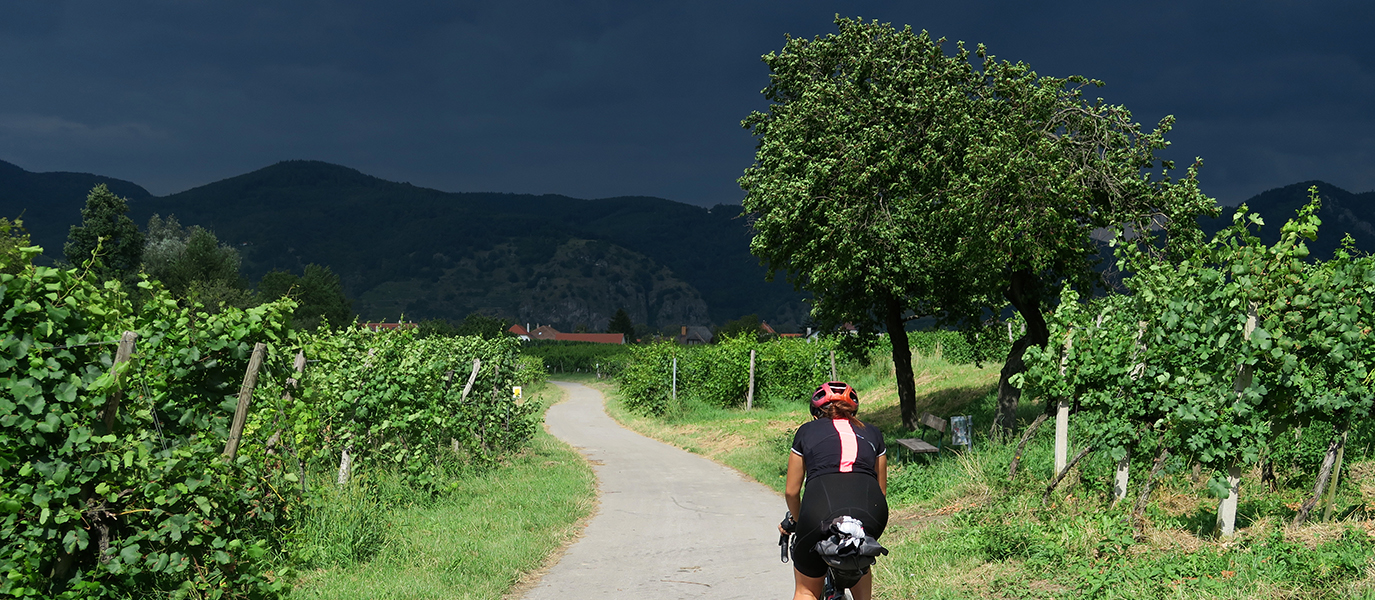 Blog: Follow the River – Cycling Danube Trip Tip