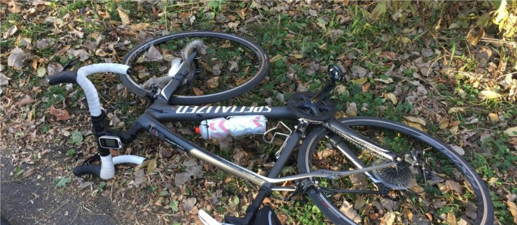 Have Squirrels Declared War on Cyclists?