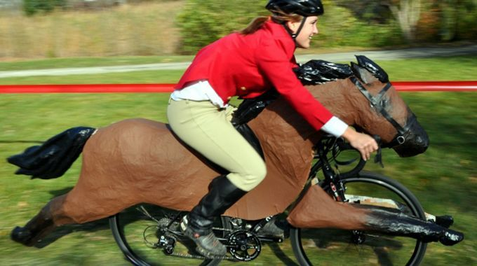 If you encounter horses while cycling, you should follow some advice to ensure that both you and the horse can continue riding safely and enjoyably.