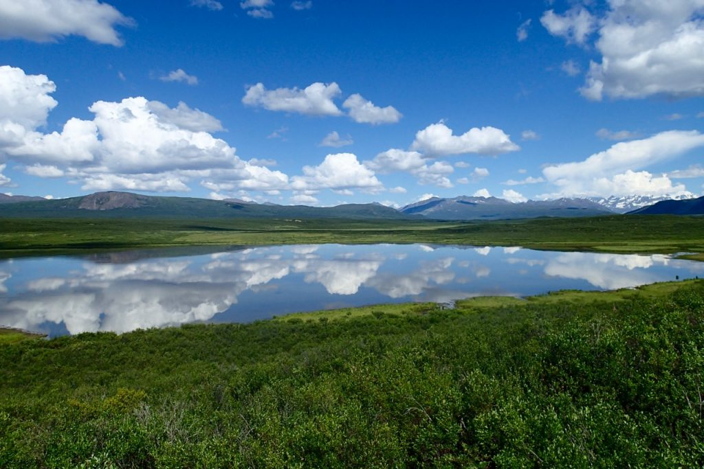 Beautiful weather and views from the Denali highway.