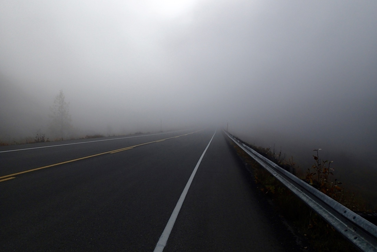 Very foggy on the road