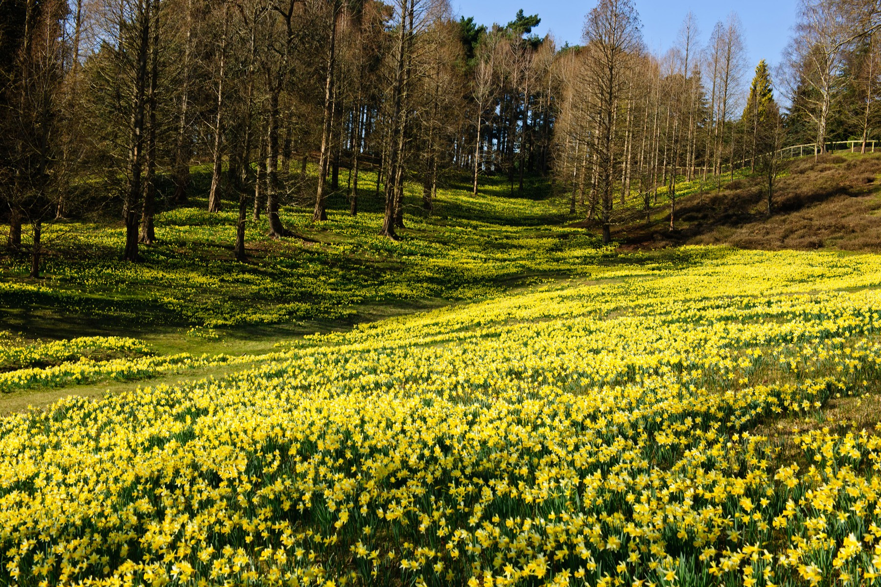 Best Spring Cycling Trips Watch The Flowers Bloom From The Saddle