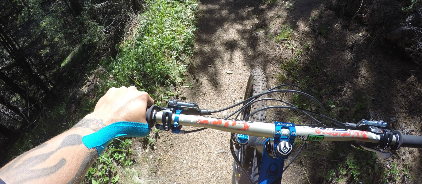Master Your Trail Skills: Tips for Riding Over Roots with ...